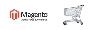 Magento Commerce Website